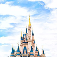 A trip to Disney World is a great auction item.