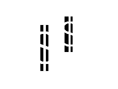 icon-t2g