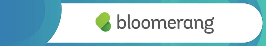 Bloomerang is a top nonprofit software solution.