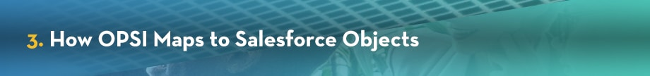 3. How OPSI Maps to Salesforce Objects