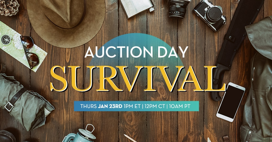 Auction Event Survival