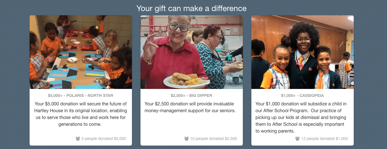 This example online fundraising page shows donors the impact that different giving levels will have.