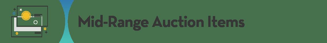 mid-range auction item ideas