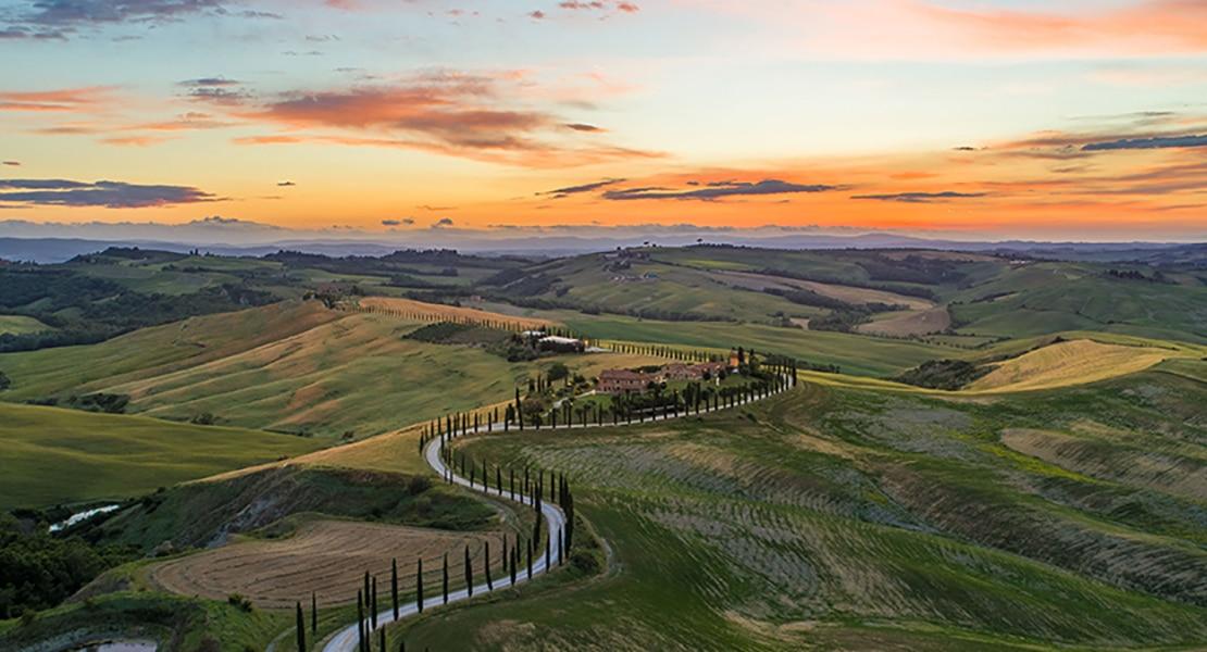 Tuscany Truffle Hunt