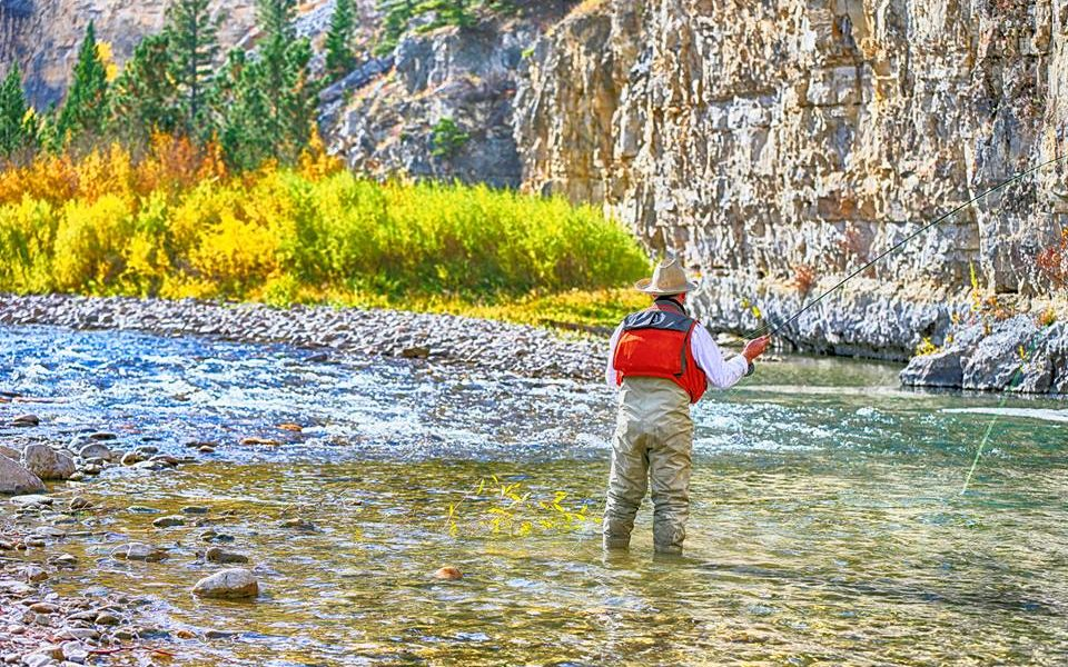 Copy of Copy of HiRes Fly Fish 9